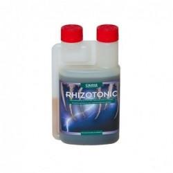 Rhizotonic Canna