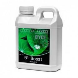 B1 BOOST 250 ML